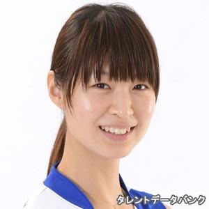 ランキング バレー 日本 女子